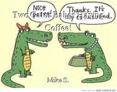 Two Gator Babes Having Coffee!