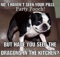 Party Pooch!