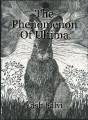 The Phenomenon Of Ultima