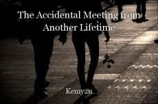 The Accidental Meeting from Another Lifetime