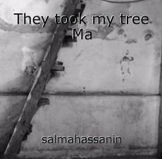 They took my tree Ma