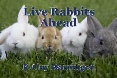 Live Rabbits Ahead