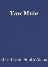 Yaw Mule