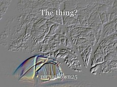 The thing?
