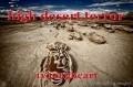high desert terror