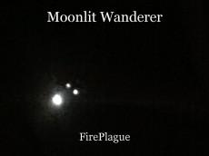 Moonlit Wanderer