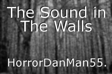 The Sound in The Walls