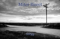 Miter Bisect