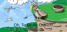 Oh, To Be An Ostrich