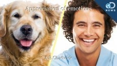 Appreciation of emotions