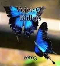 Voice Of Bullets