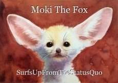 Moki The Fox