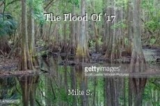 The Flood Of '17