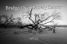 Bridge Over Lonely Saints