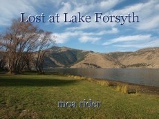 Lost at Lake Forsyth