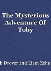 The Mysterious Adventure Of Toby