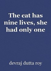 The cat has nine lives, she had only one