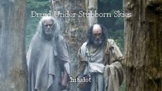 Druid Under Stubborn Skies