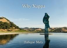 Why Nappa
