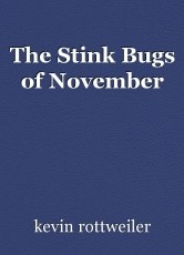 The Stink Bugs of November