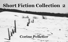 Short Fiction Collection  2