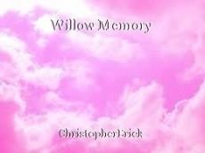 Willow Memory