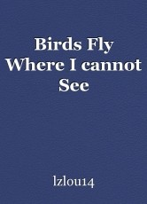 Birds Fly Where I cannot See