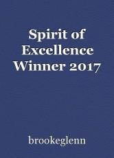 Spirit of Excellence Winner 2017