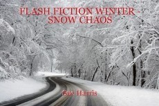 FLASH FICTION WINTER - SNOW CHAOS
