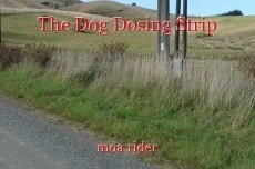The Dog Dosing Strip