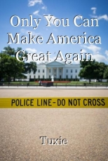 Only You Can Make America Great Again