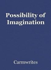Possibility of Imagination