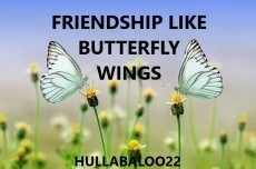 Friendship Like Butterfly Wings
