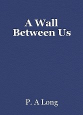 A Wall Between Us
