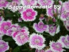 Sappy Romantic BS