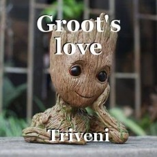 Groot's love