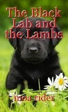 The Black Lab and the Lambs