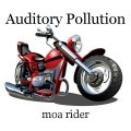 Auditory Pollution