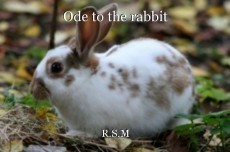 Ode to the rabbit