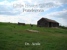Little House On The Ponderosa