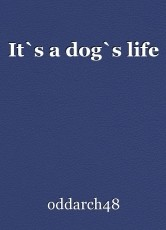 It`s a dog`s life