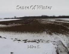 Sense Of Winter