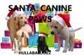 Santa Canine Paws