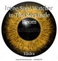 Irene Sun: Watcher in The Rectangle Room