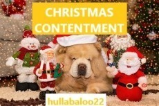 Christmas Contentment