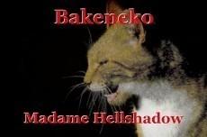 Bakeneko