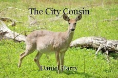 The City Cousin
