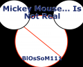 Mickey Mouse... Is Not Real