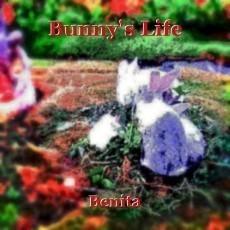 Bunny's Life