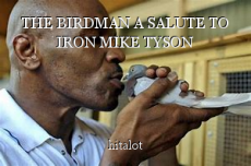 THE BIRDMAN A SALUTE TO IRON MIKE TYSON